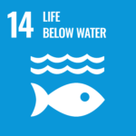 What is SDGs?: Goal 14. Conserve and sustainably use the oceans, seas and marine resources for sustainable development